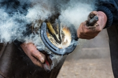 Farrier-at-work